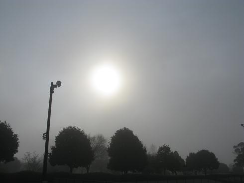 霧の運動公園
