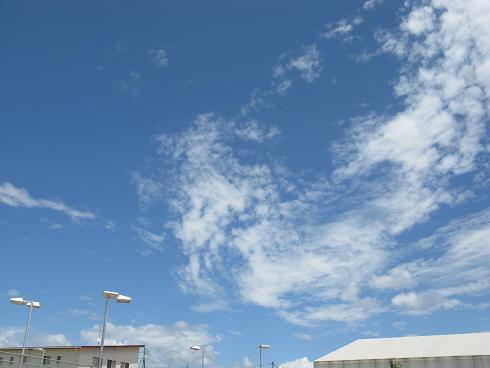 北米大陸を思わせた雲