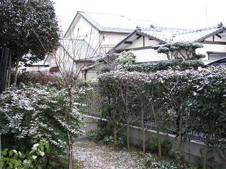 yukikeshiki