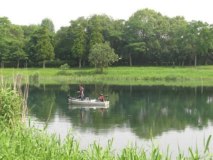 江津湖-1
