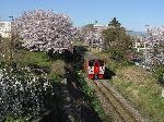 線路と電車