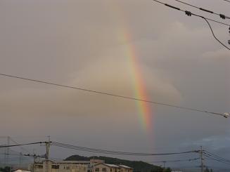 空をまたいだ虹